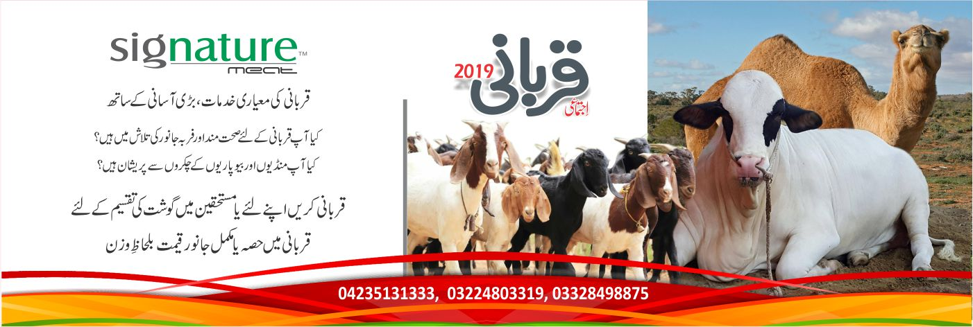 website qurbani-banner